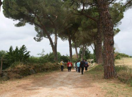 CIVITA CASTELLANA – visita all'Abbazia di Santa Maria di Falleri e la Via Amerina